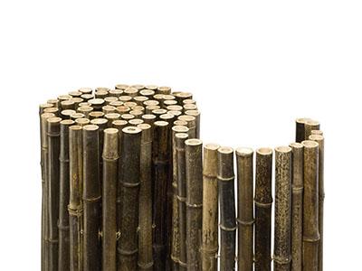 Bambus-Köln Bambuszäune