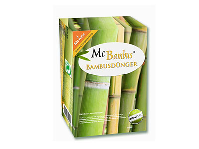 Bambus-Köln Bambuspflege