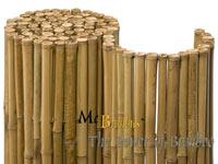 Bambus-Köln Detailansicht  Bambusrollzaun Natur